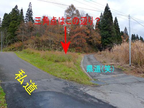 oozatobayashi4.jpg