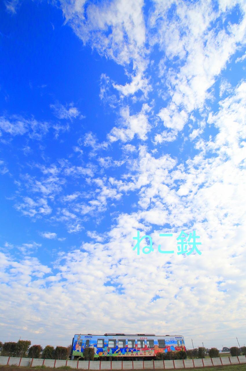 IMG_0207f6100_1.jpg
