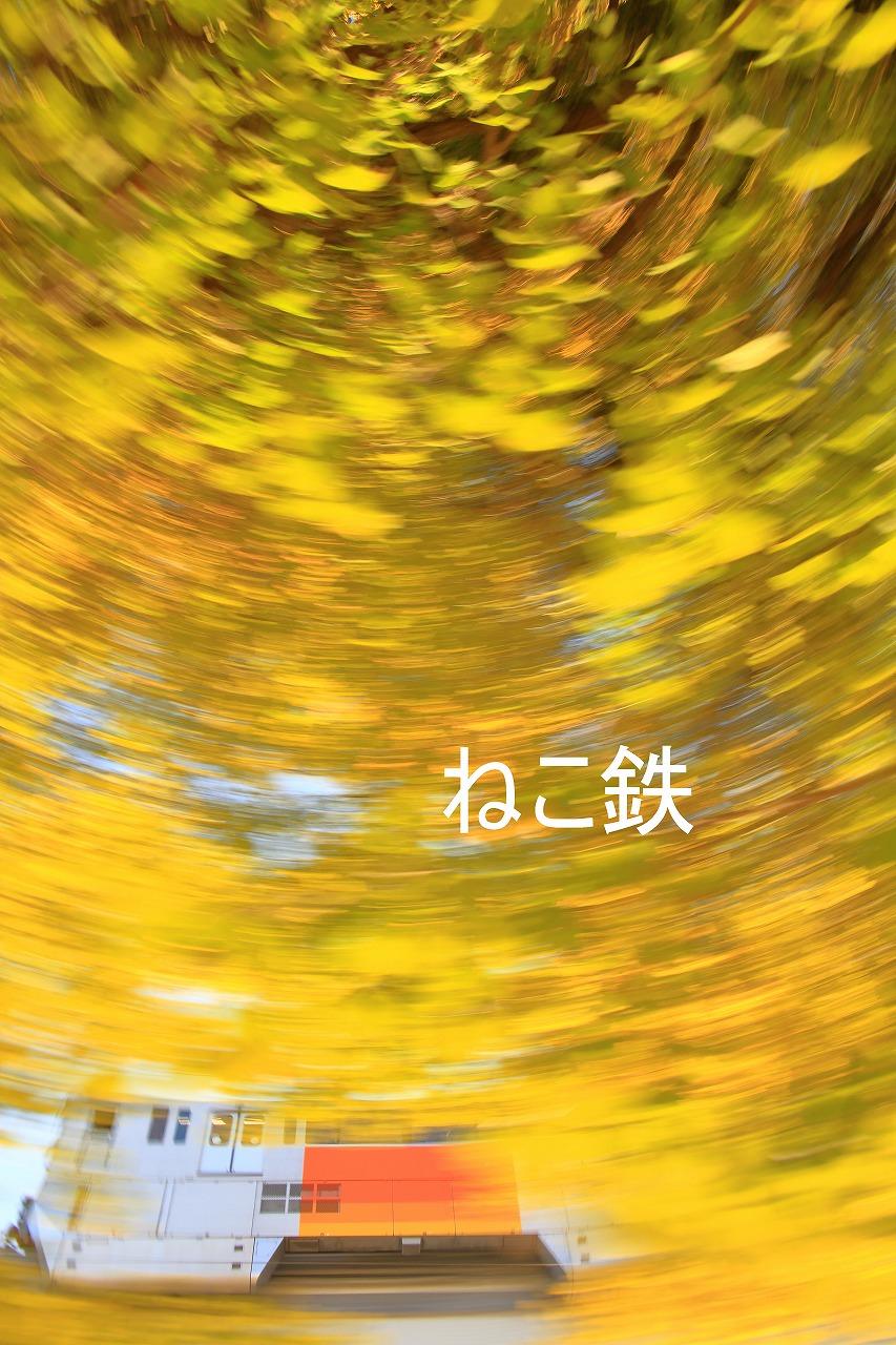 IMG_4501f7000_1.jpg