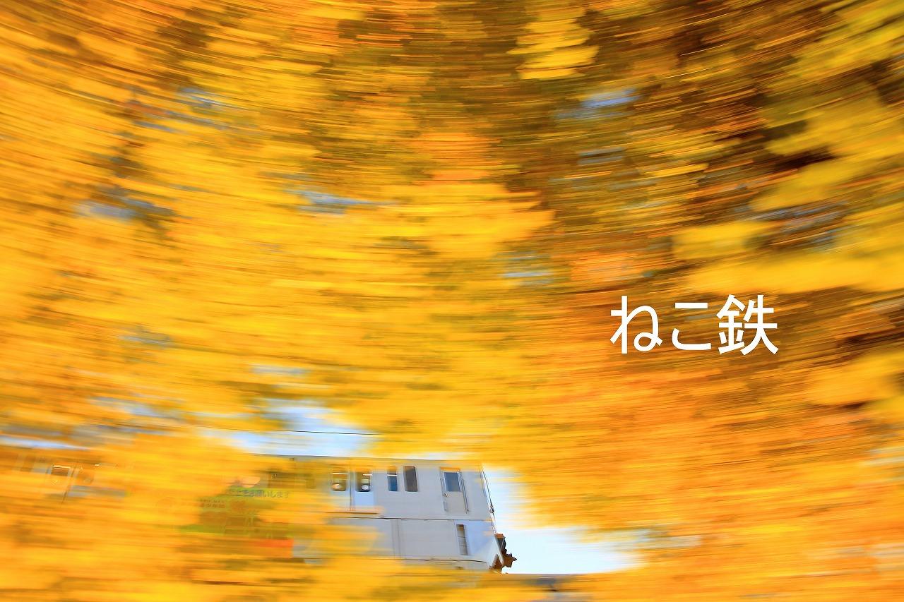 IMG_4587jidou_1.jpg