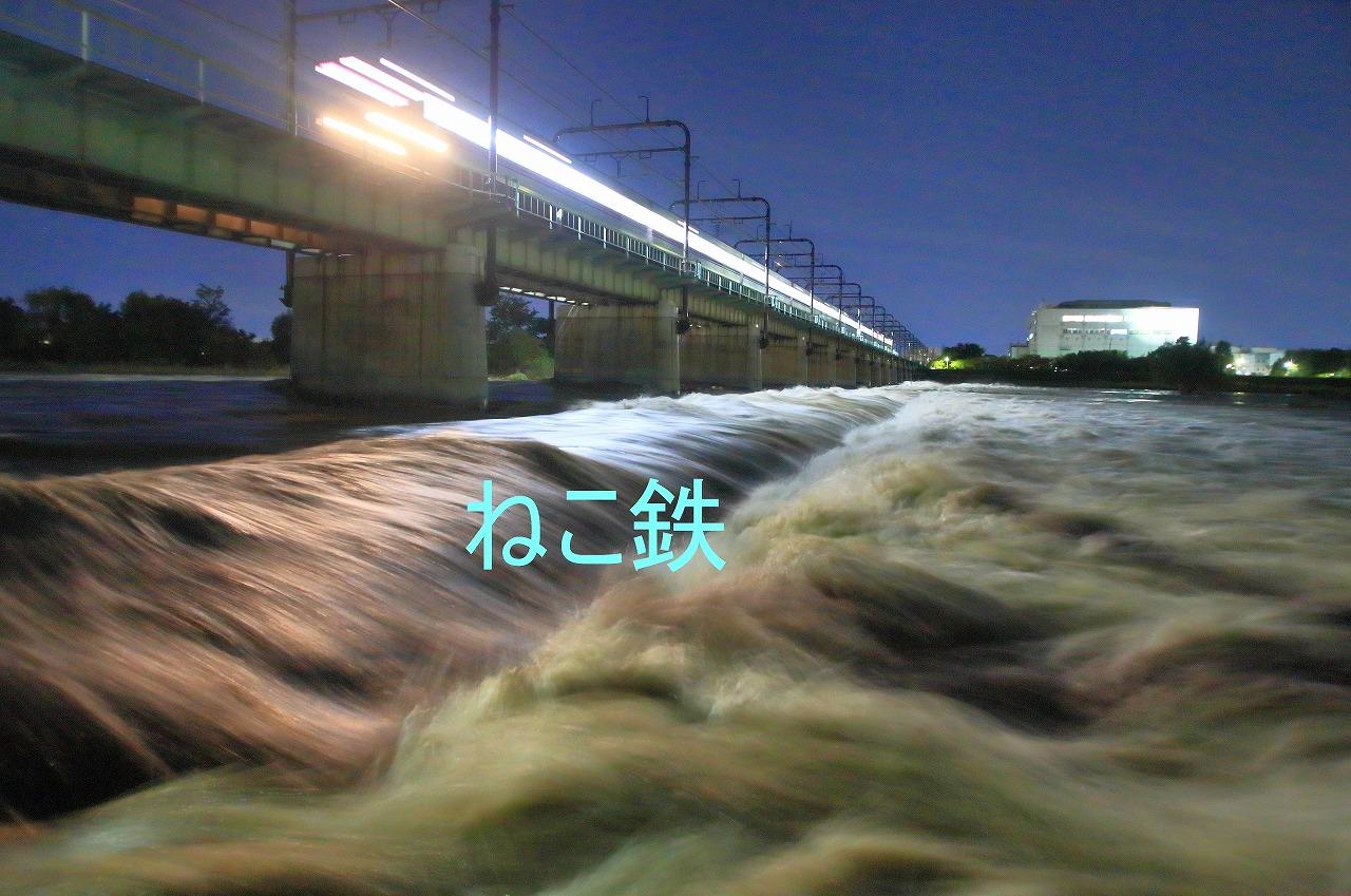IMG_9732noizu_1.jpg