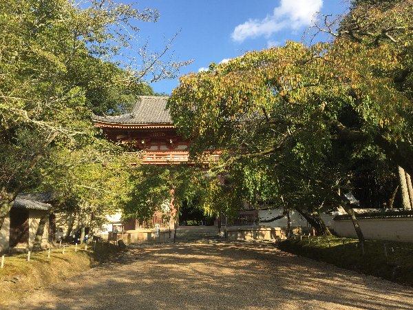daigoji-kyoto-062.jpg