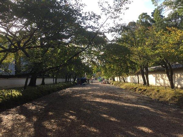 daigoji-kyoto-065.jpg