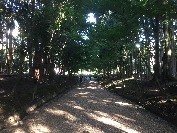 daigoji-kyoto-066.jpg