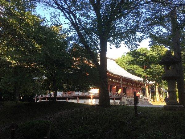 daigoji-kyoto-067.jpg