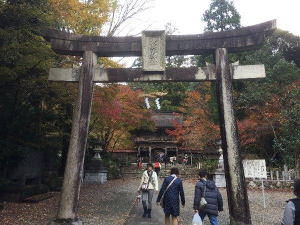 ooyata-minou-003.jpg
