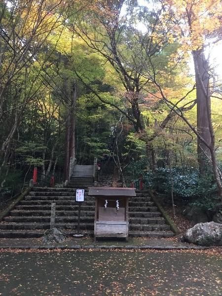 ooyata-minou-025.jpg