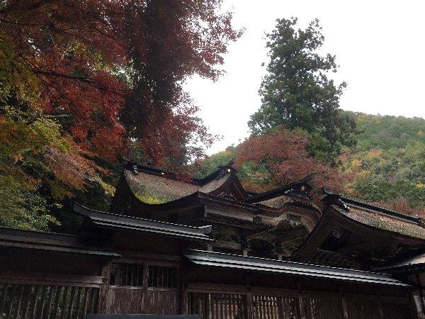 ooyata-minou-047.jpg