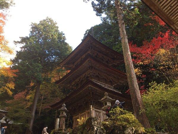 yokokuraji-tanikumi-017.jpg