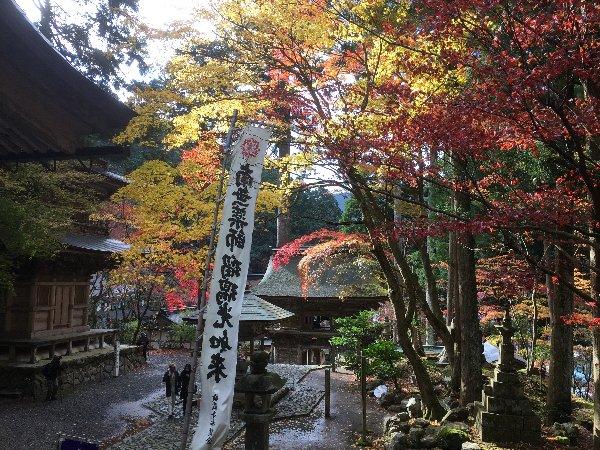 yokokuraji-tanikumi-051.jpg