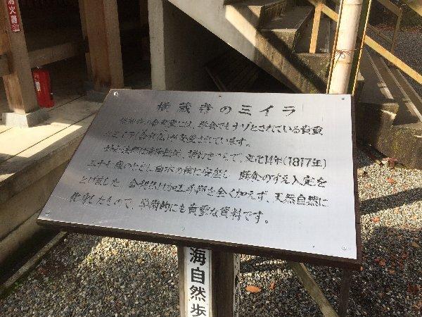 yokokuraji-tanikumi-061.jpg