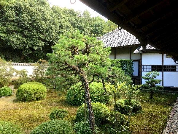zuishinji-kyoto-039.jpg