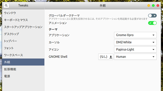 Human v4.6.6 Ubuntu GNOME Shellテーマの適用