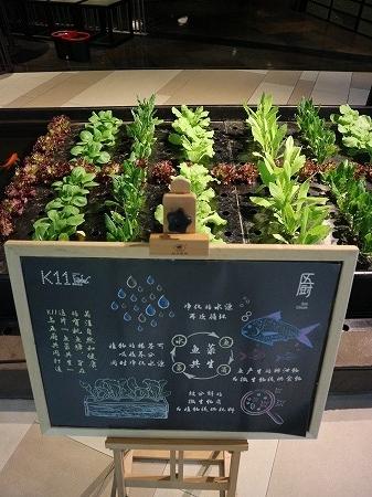 上海:4月2017年 (82)