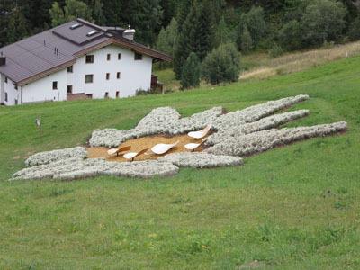 Tirol_0831_15