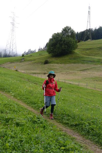 Tirol_0831_16