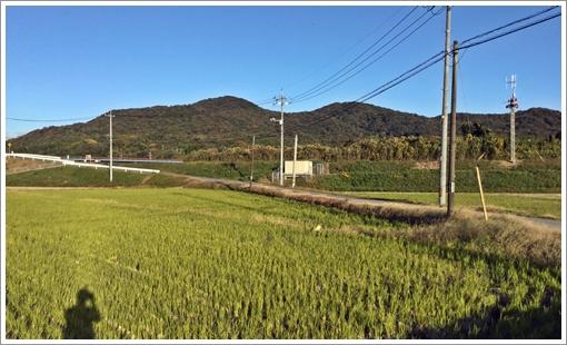 shimofuridake_tashiro01.jpg