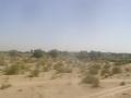 P1010190タール砂漠