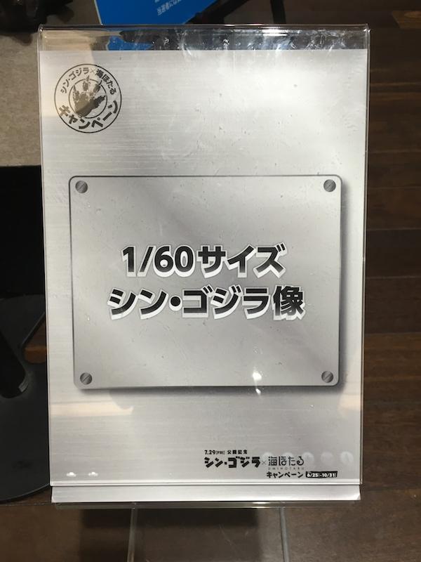 IMG-5623.jpg