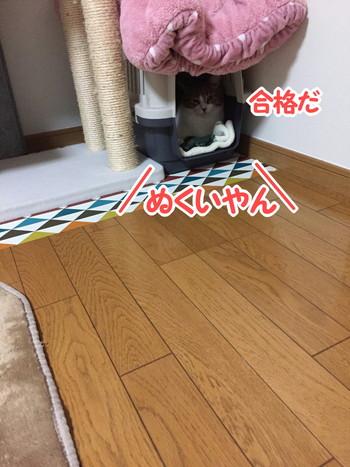 S_6898780615301.jpg