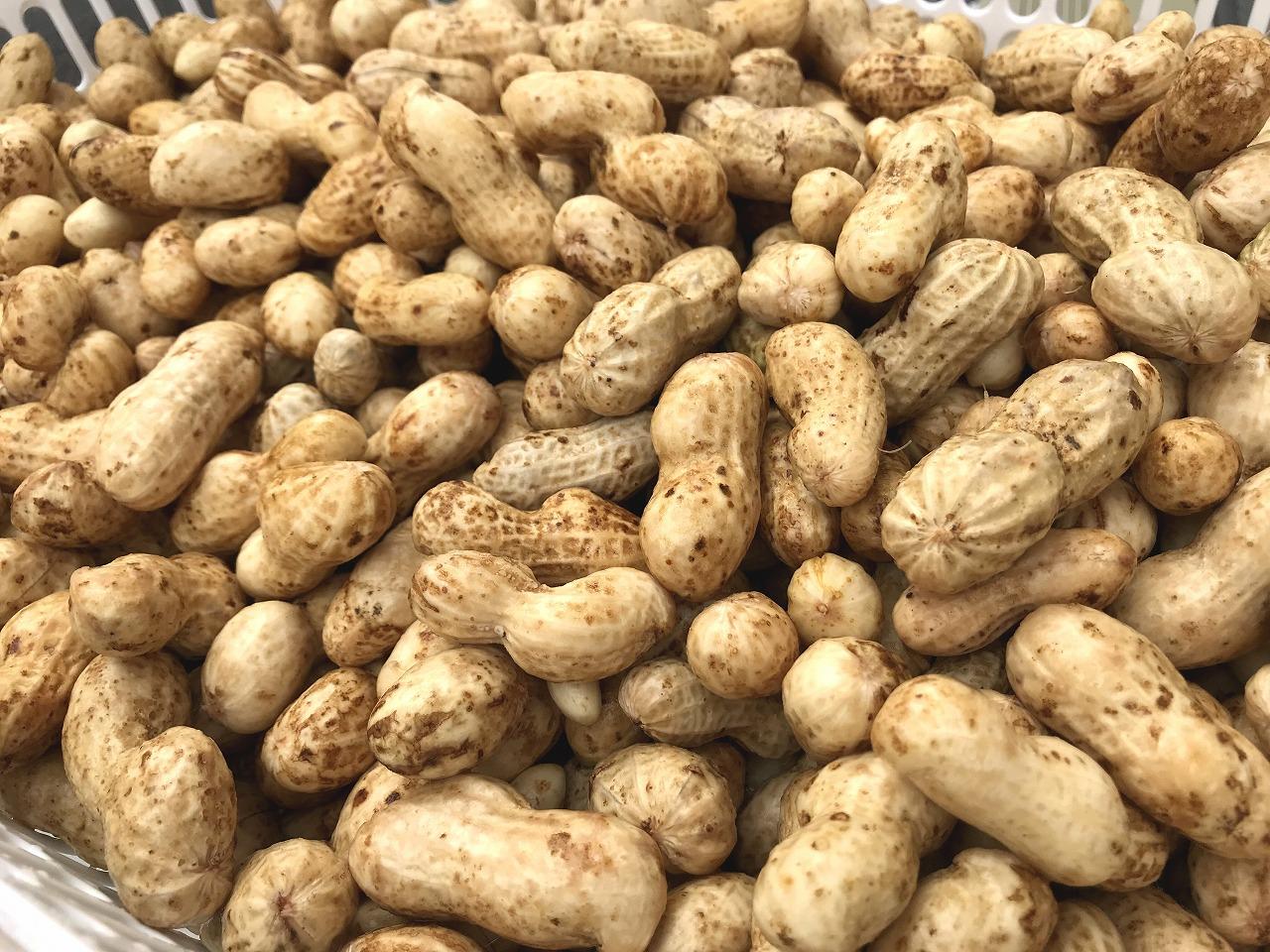 20171014-Peanut_Harvest-I03.jpg