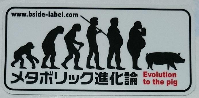 正しい進化