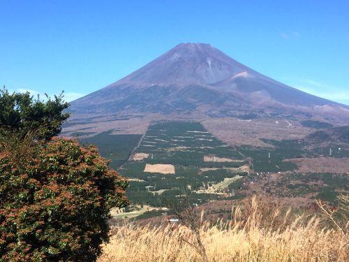 見晴台からの富士