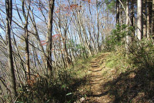 鍋割山への稜線