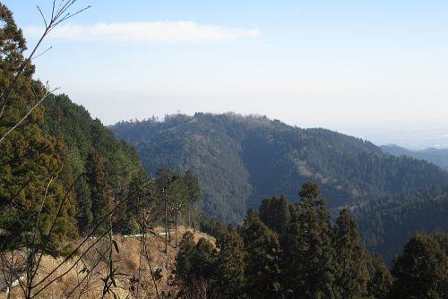 高尾山を眺める