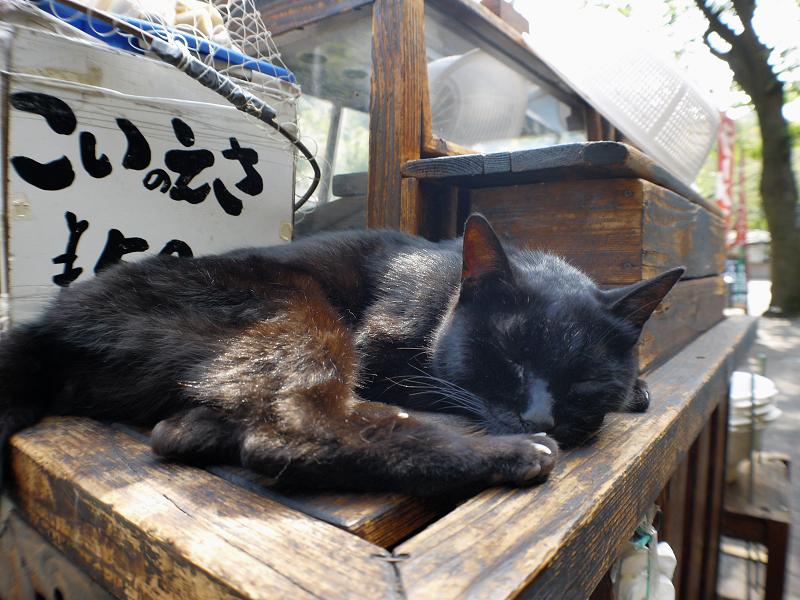 こいのえさと黒猫2