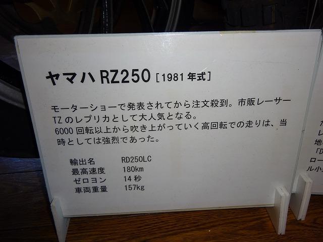 1710DSC03626.jpg