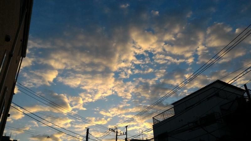 冬至の早朝