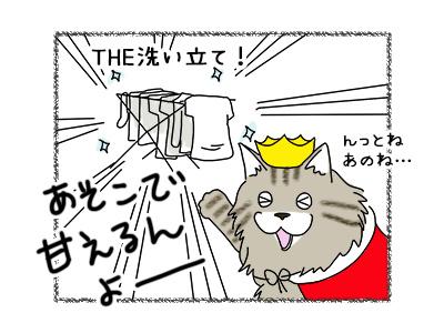 01112017_cat2mini.jpg