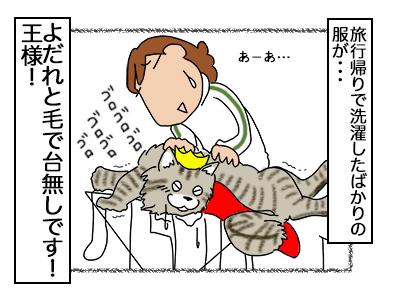 01112017_cat4miniaq.jpg