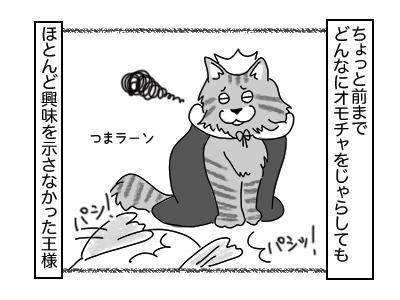01122017_cat1mini.jpg