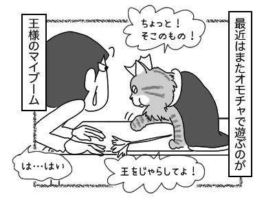 01122017_cat4mini.jpg