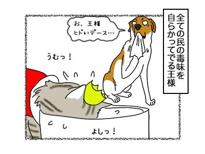 02102017_cat1mini.jpg
