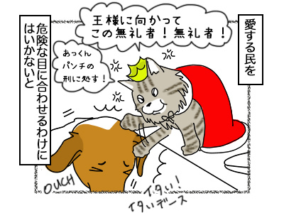 02102017_cat3mini.jpg