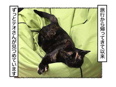 02112017_cat1mini.jpg
