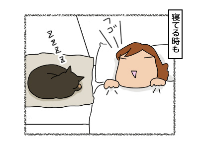 02112017_cat3mini.jpg