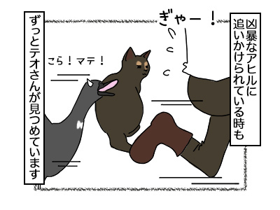 02112017_cat5.jpg
