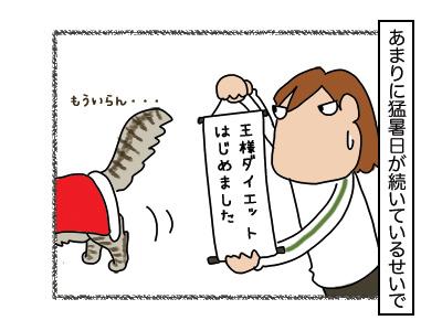 02122017_cat1mini.jpg