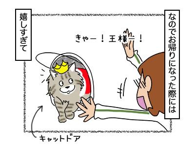 03102017_cat2mini.jpg