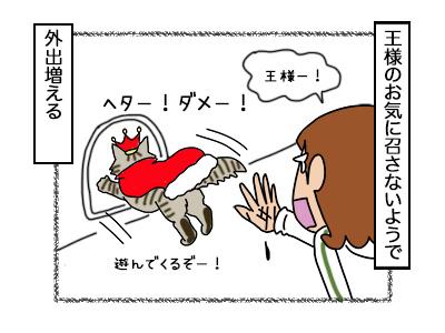 03102017_cat4mini.jpg
