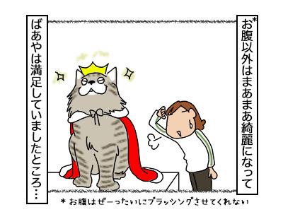 03112017_cat2mini.jpg