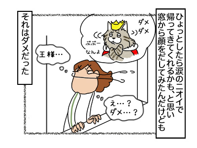 04102017_cat4mini.jpg