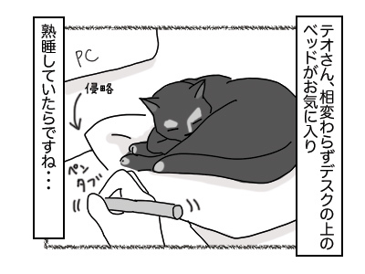 04122017_cat1mini.jpg