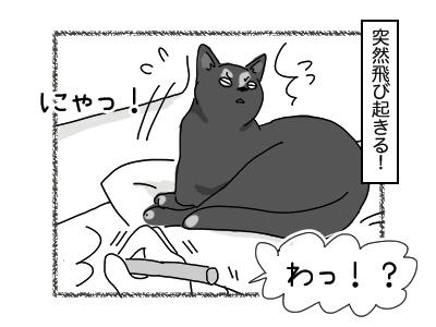 04122017_cat2mini.jpg