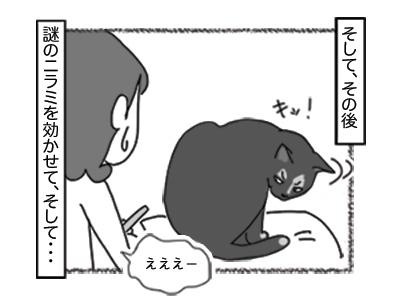 04122017_cat3mini.jpg