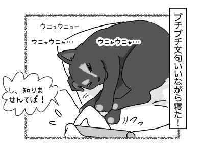 04122017_cat4mini.jpg